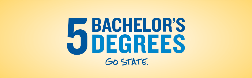 5 Bachelor's Degrees - GO STATE.